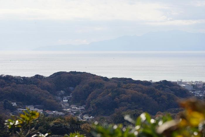 鎌倉アルプス8611