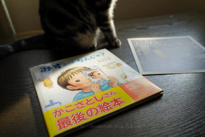 bookcover7994.jpg