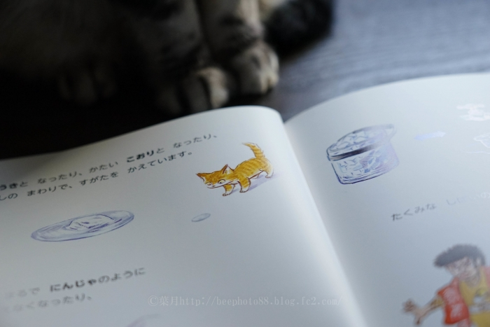 bookcover8078.jpg