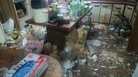 猫屋敷清掃ビフォー