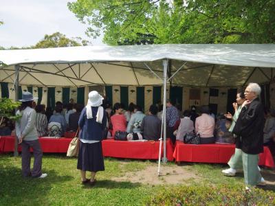 杜の都大茶会 (3)