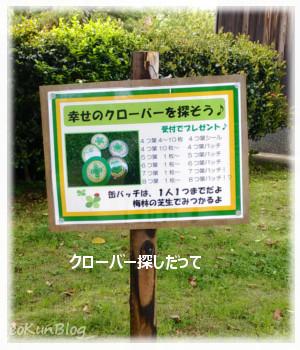201605043b.jpg