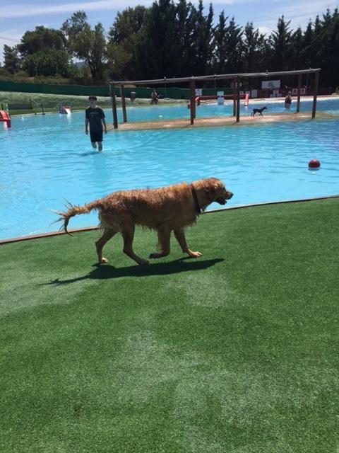 Aguapark4.jpg