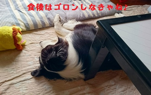 s-_20160908_190614.jpg