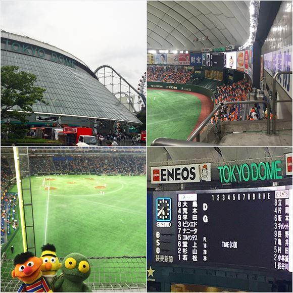 ゆうブログケロブログ野球観戦