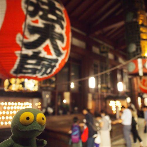 ゆうブログケロブログほおずき市と風鈴市2016 (10)