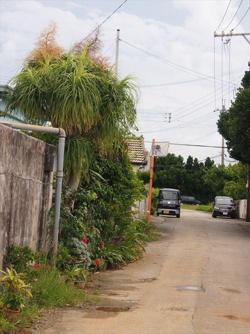 ゆうブログケロブログ沖縄2016 (33)