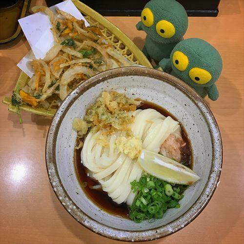 ゆうブログケロブログ秋のばら苑とうどん (1)