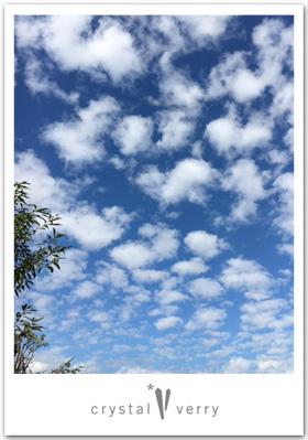 クリスタル ベリー オーダージュエリー石神井公園