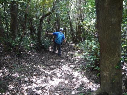 登山道降り