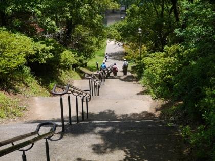 公園が近い(2)