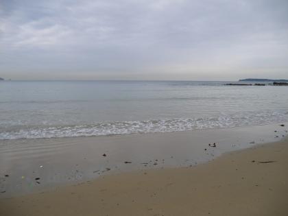 三苫海岸(2)