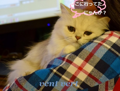 2016111320380438f.jpg