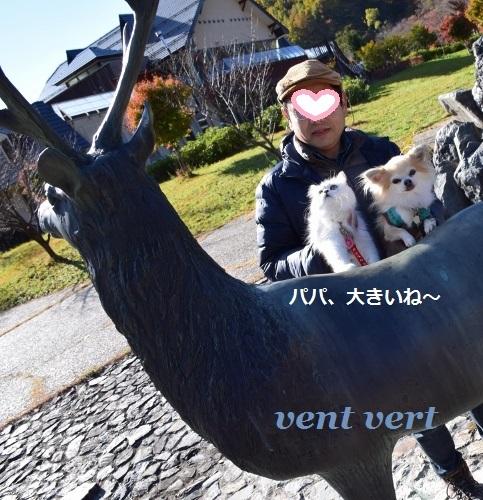201611152300246fc.jpg