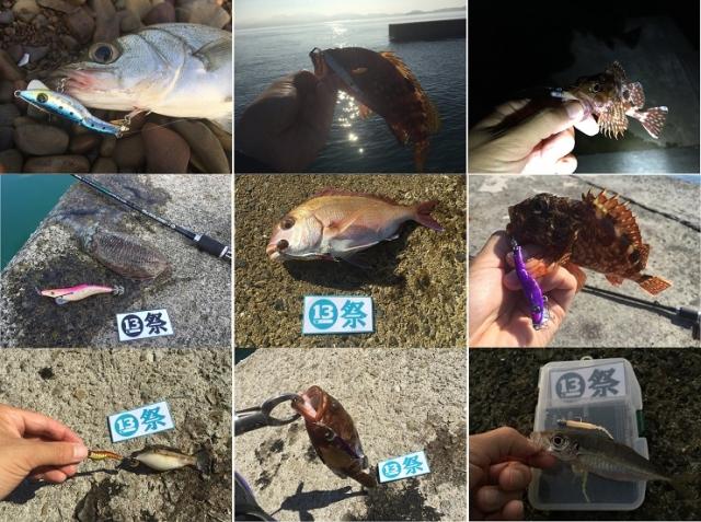 多魚種釣り