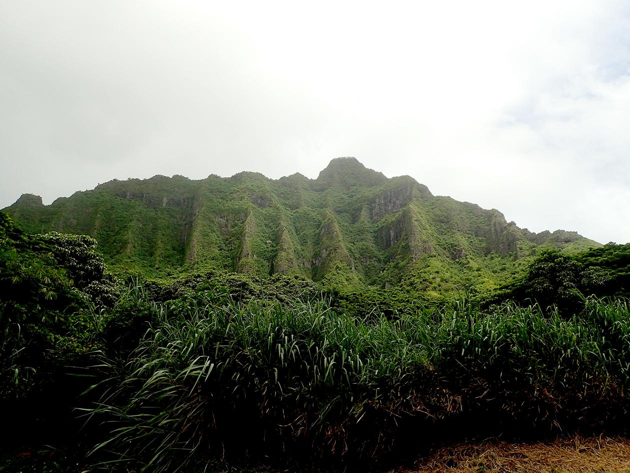 2016-09Hawai028.jpg