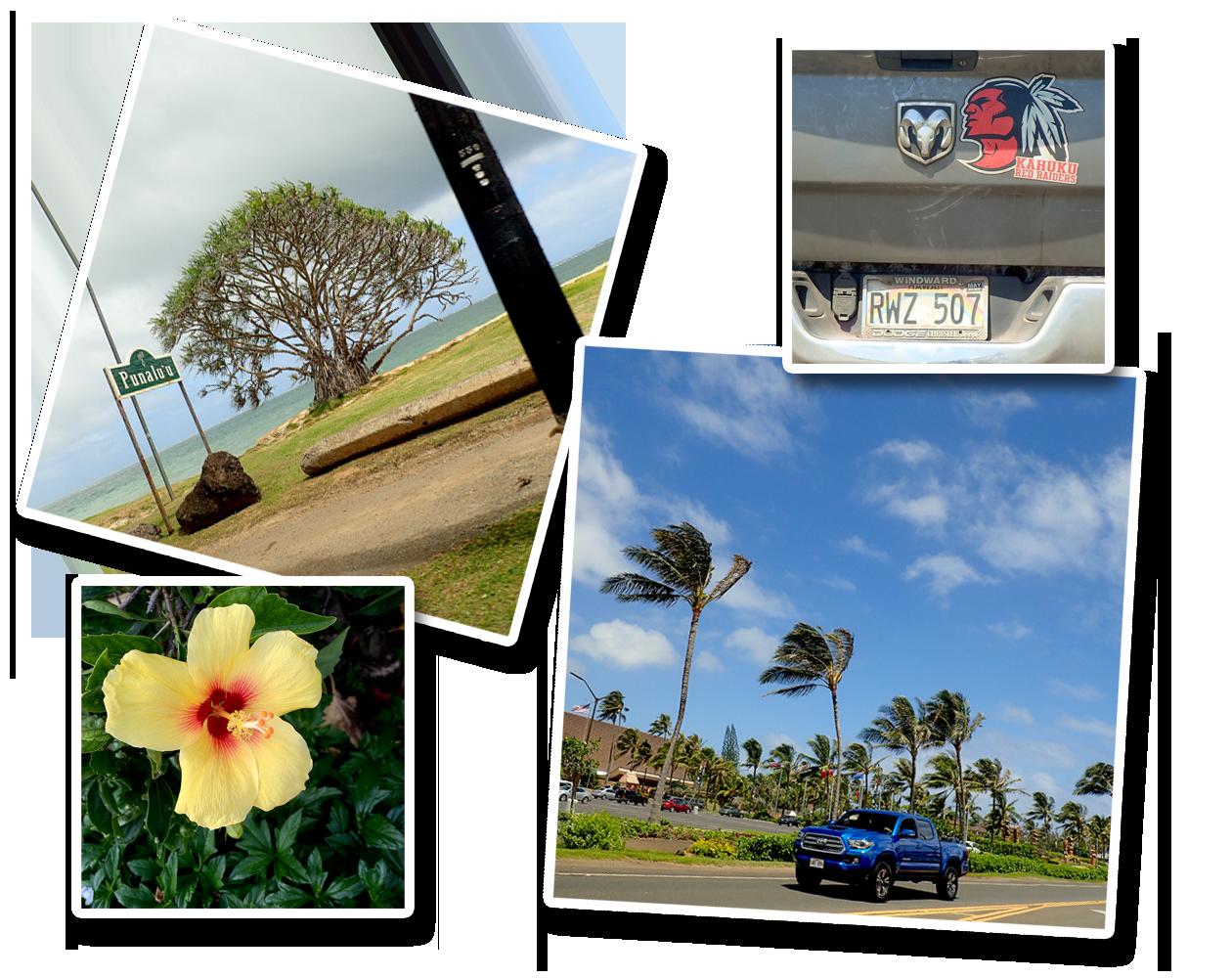 2016-09Hawai034.png