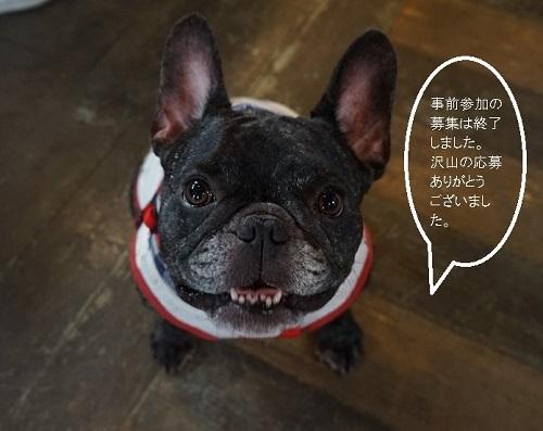 桜次郎終了のお知らせ