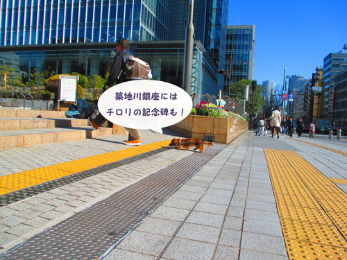 2016-3-tsukiji34.jpg