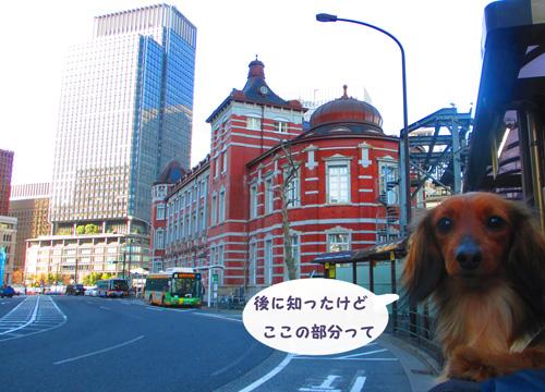 2016-3-tsukiji37.jpg