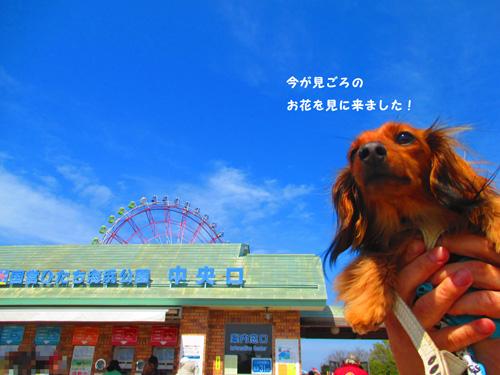 2016-4-hitachi12.jpg