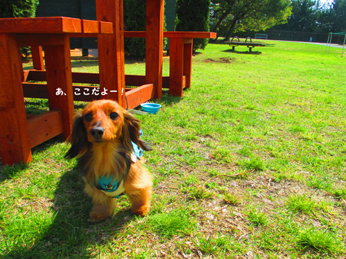 2016-4-hitachi15.jpg