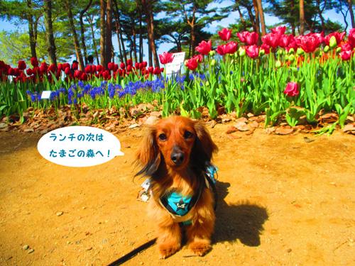2016-4-hitachi17.jpg