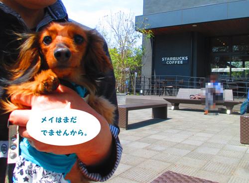 2016-4-hitachi8.jpg