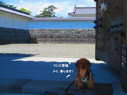 2016-5-odawara19.jpg