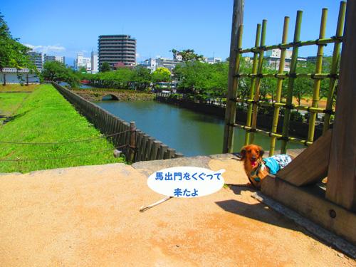 2016-5-odawara20.jpg
