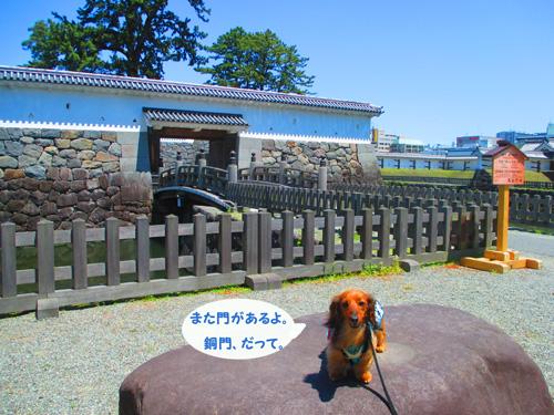 2016-5-odawara24.jpg