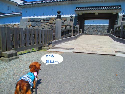 2016-5-odawara25.jpg