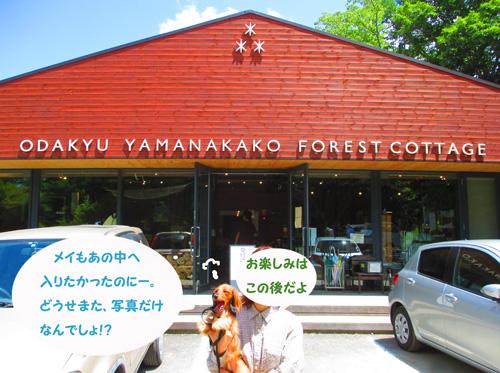 2016-8-yamanakako10.jpg