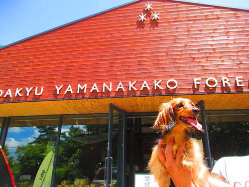 2016-8-yamanakako11.jpg