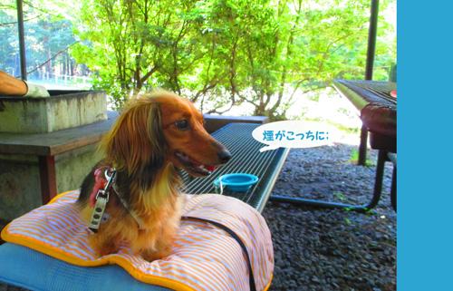 2016-8-yamanakako17.jpg