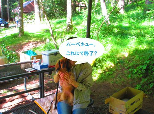 2016-8-yamanakako37.jpg