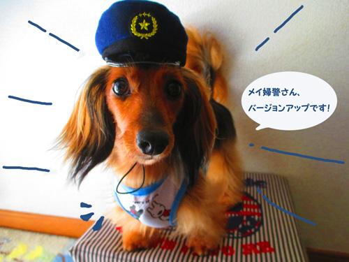 omawari-san10.jpg