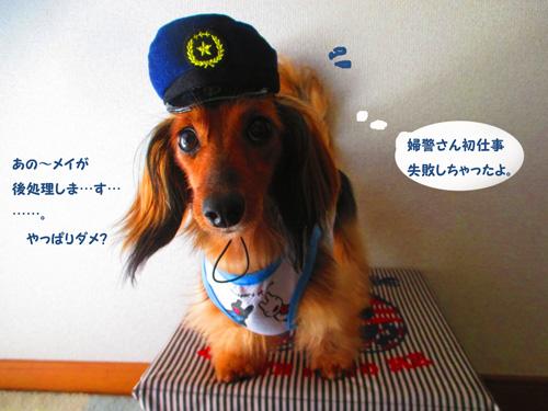 omawari-san15.jpg
