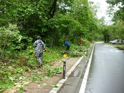 yasumiya06.jpg