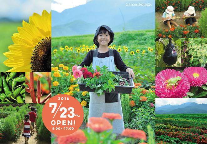 gardenpotager2_2016.jpg