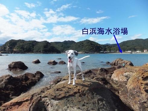 blog_1029_125125.jpg