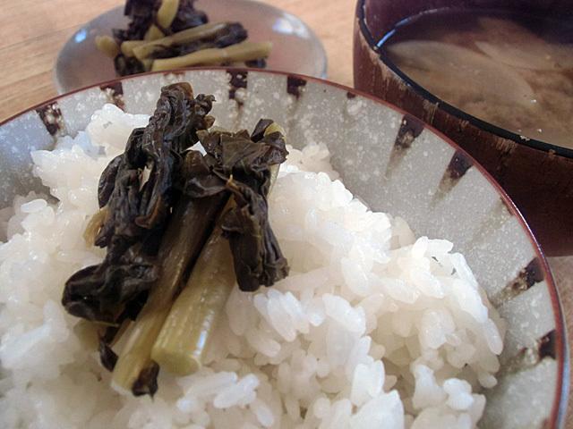 大根葉の漬物で飯を食う