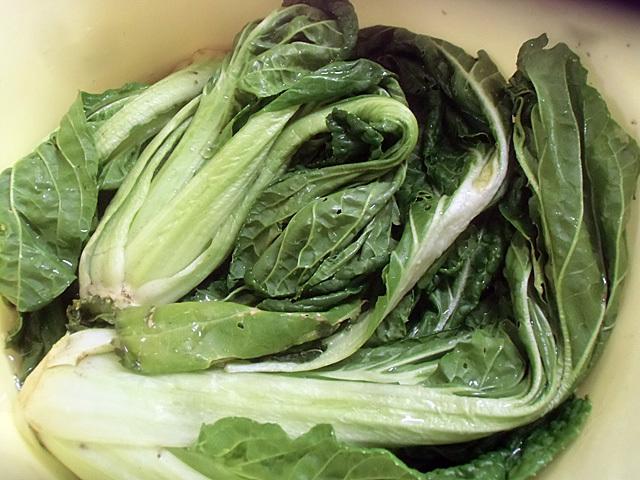 新しい野菜を桶に詰める