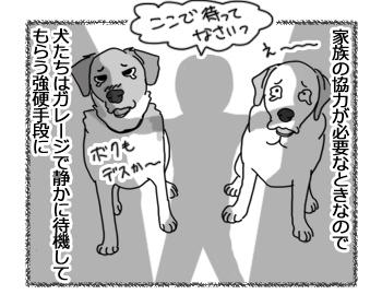 羊の国のラブラドール絵日記シニア!!「毛刈り当日の犬たち」2