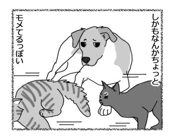 羊の国のラブラドール絵日記シニア!!「犬も食わんよ」2