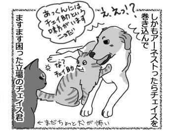 羊の国のラブラドール絵日記シニア!!「犬も食わんよ」4
