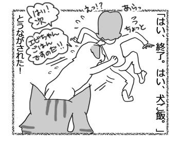 羊の国のラブラドール絵日記シニア!!「ディストラクション」5