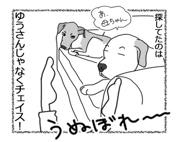 羊の国のラブラドール絵日記シニア!!「うぬぼれちゃいなよ、YOU!」5