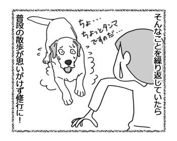 羊の国のラブラドール絵日記シニア!!「思わぬ修行」5