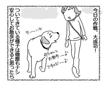 羊の国のラブラドール絵日記シニア!!「シニアのお散歩」2